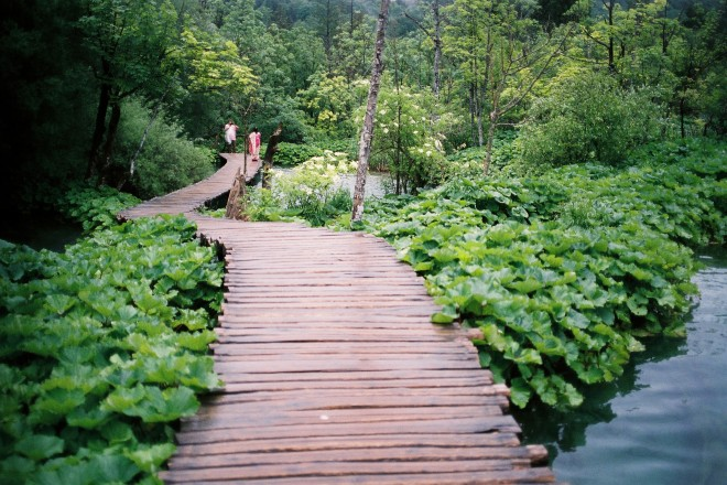 film travel plitvice photography