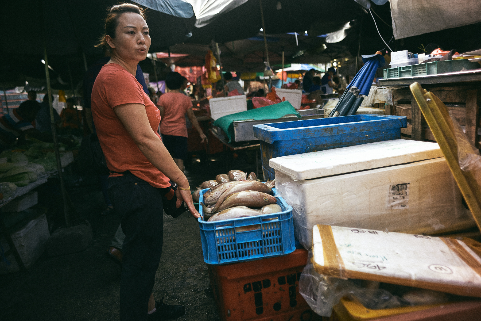 kuala lumpur street photography, bucket of fish